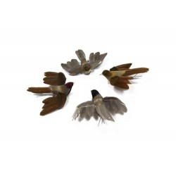 Caja de 12 pájaros surtido