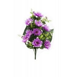Pomo Lotus/Orchid x 18