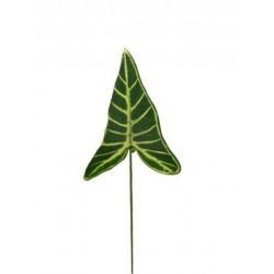Pomo x 12 hojas syngonium