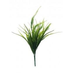 Planta relleno