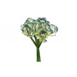 Bolsa de 12 pomos x 6 flores