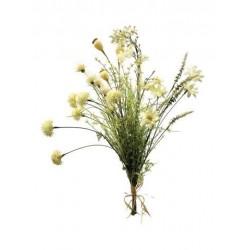 Bush flor seca x 5