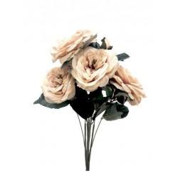 Bush x 5 rosas