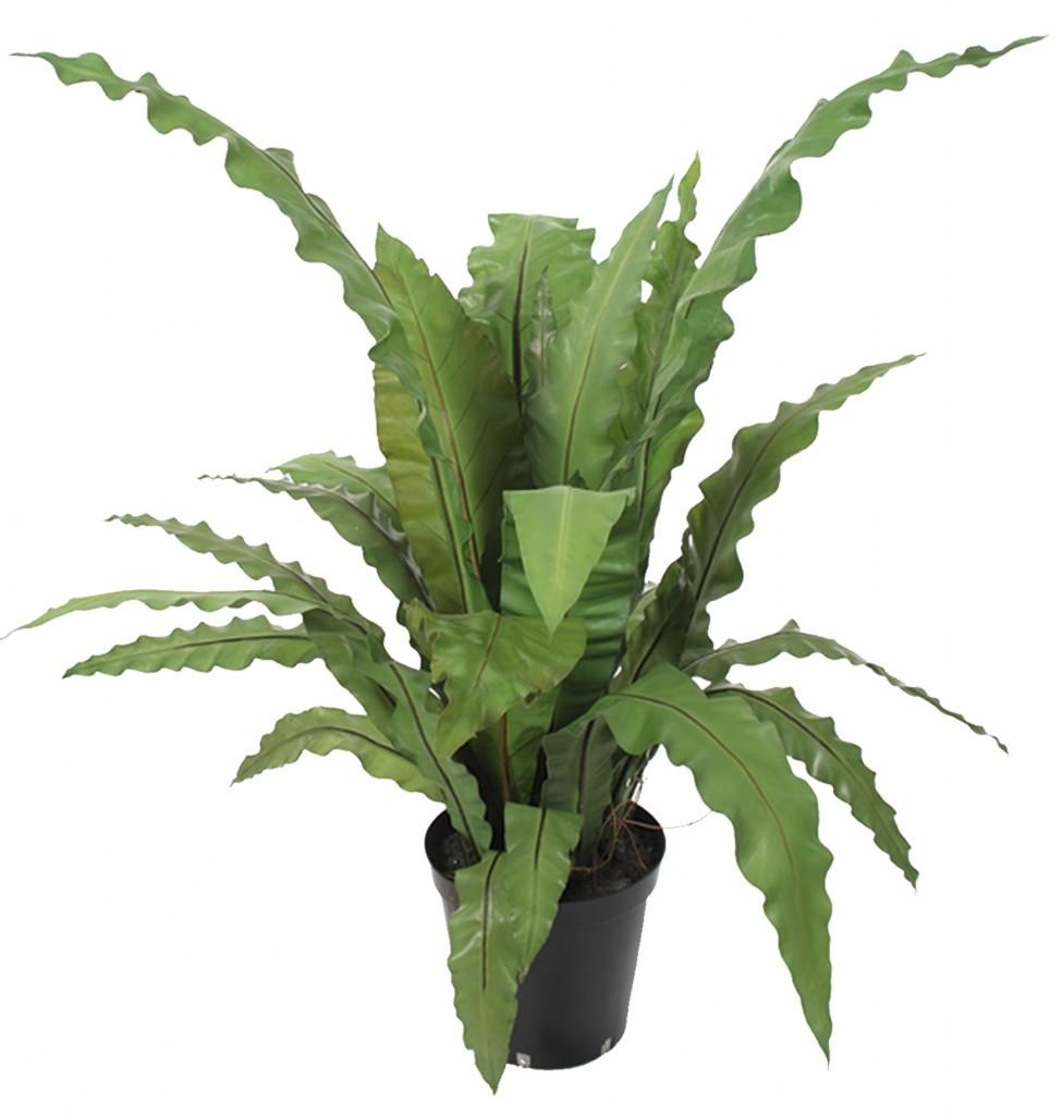 Planta artificial splendium